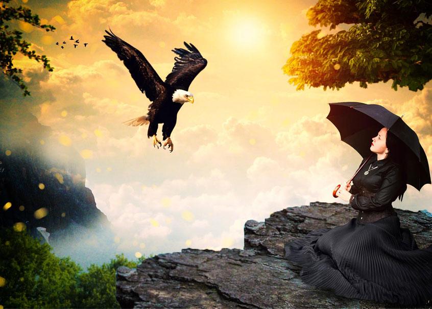 Ein schwarzer Seeadler mit einem weißen Kopf, das amerikanische Wappentier, ist im Landeanflug begriffen. Er will auf einem schroffen Felsen landen, auf dem eine sehr große, graue Echse sitzt. Am Bildrand kann man eine weibliche Figur mit einem Regenschirm erkennen.
