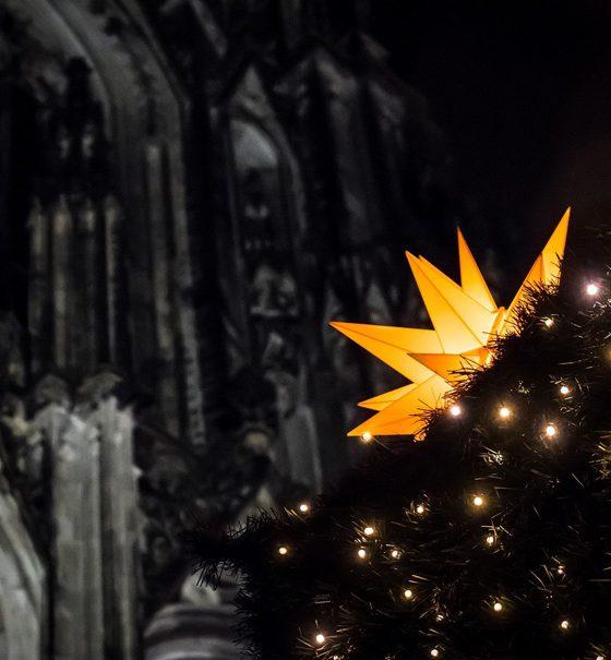 Vor einer Teilansicht des Eingangsportals des Kölner Domes steht ein mit einem großen, leuchtenden Weihnachtsstern und elektrischen Kerzen geschmückter Christbaum.