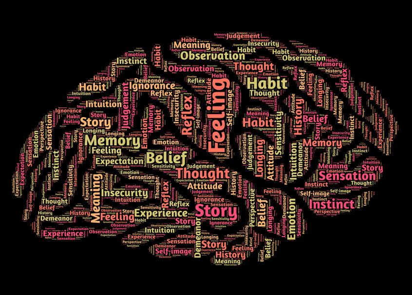 Man sieht ein gezeichnetes Gehirn, dessen einzelne Areale mit englischen Ausdrücken benannt sind, wie Feeling, Habit, Belief, Thought, Memory, Story Experience, Sensation, Meaning, Ignorance, oder Habit.